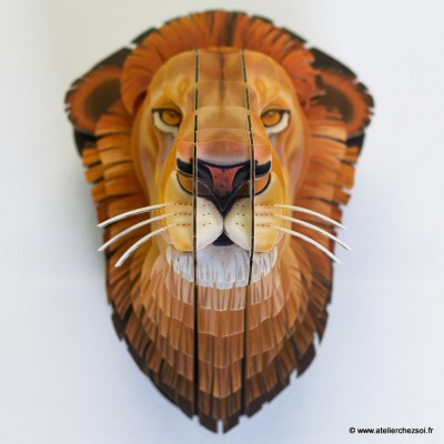 lion_carton_M_deco_detail.jpg