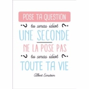 Carte postale Pose ta question Idiot une seconde 15x21 cm Kiub