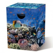 Tabouret en carton Aquarium Remember