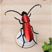 Kit de fabrication 1 Scarabé Rouge Rosalia Beetle Assembli