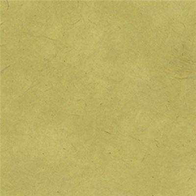 papier n palais uni couleur vert sauge 50x75 cm de l 39 atelier chez soi. Black Bedroom Furniture Sets. Home Design Ideas
