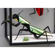 Kit de fabrication 1 Mante religieuse Verte Praying Mantis Assembli